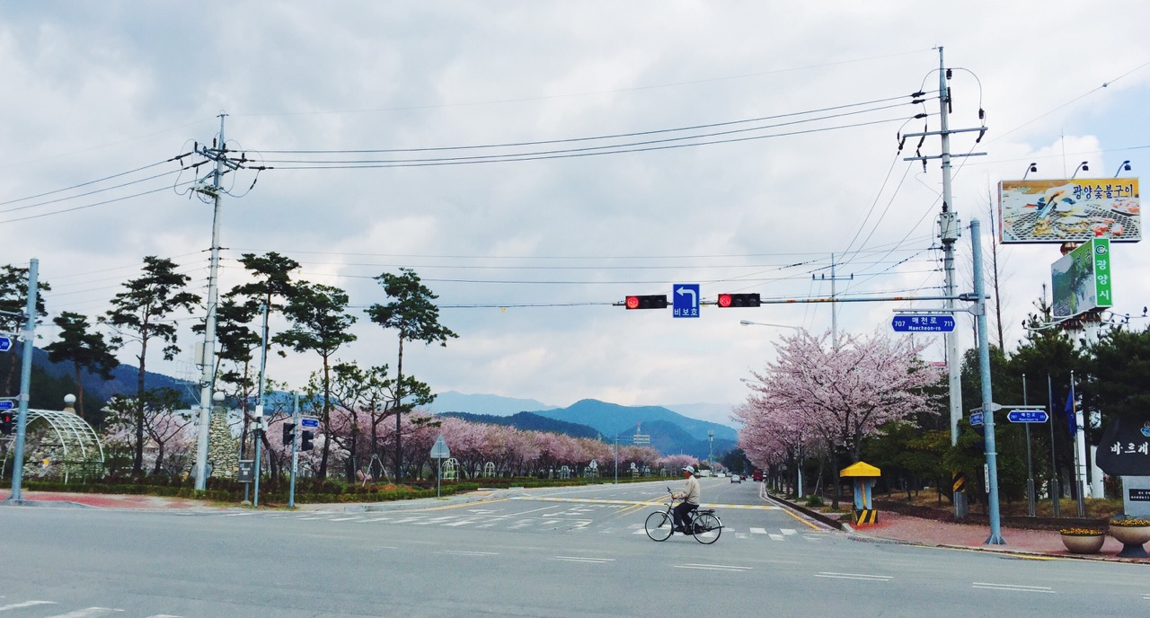 035_Wide Street