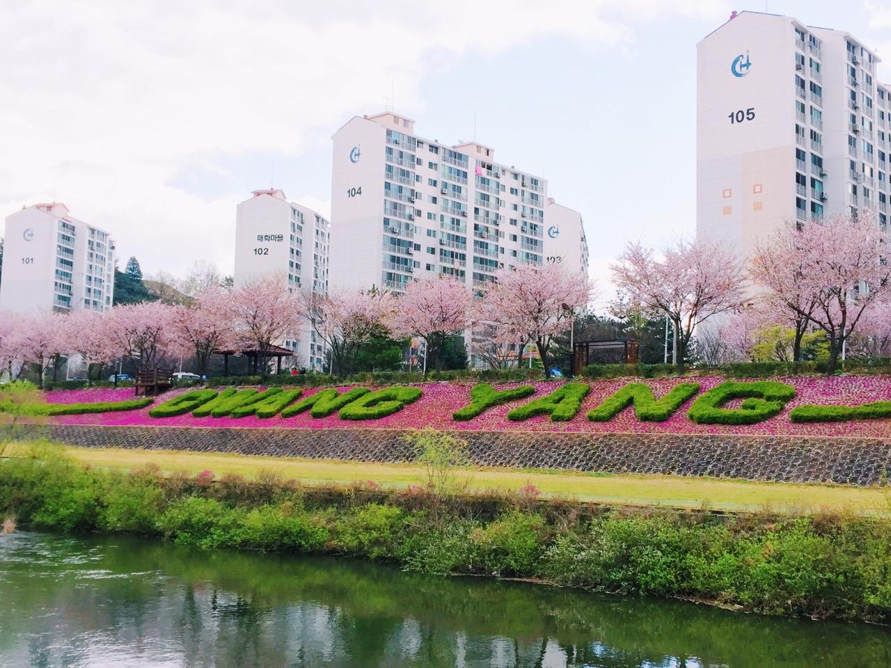 050_Gwang Yang